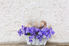 在一个白色篮子的小米黄复活节彩蛋与紫罗兰 图库摄影