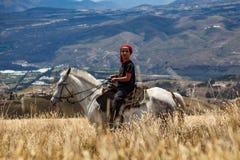 在一个白马的年轻人乘驾 库存照片