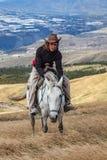 在一个白马的年轻人乘驾 图库摄影