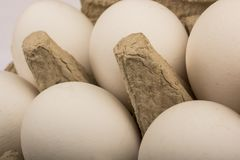 在一个盘子的六个鸡蛋十个蛋孤立的 库存图片