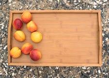 在一个盘子的成熟油桃在背景海小卵石 库存图片