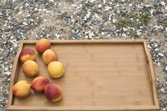 在一个盘子的成熟油桃在背景海小卵石 免版税库存图片