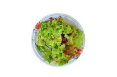 在一个盘的沙拉菜在一个红色木地板上 图库摄影