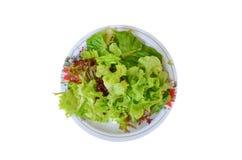在一个盘的沙拉菜在一个红色木地板上 免版税库存照片