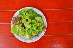 在一个盘的沙拉菜在一个红色木地板上 免版税库存图片
