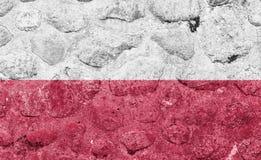 在一个石墙上的波兰旗子 皇族释放例证