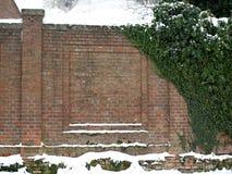 在一个石墙上的绿色常春藤 免版税库存照片