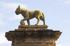 在一个石门岗位顶部的一个狮子雕塑在对Mussenden的主教` s门入口在北爱尔兰北海岸  库存图片