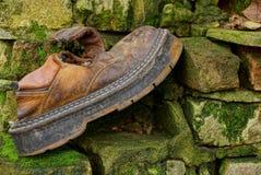 在一个砖墙上的一双大老和褴褛鞋子在青苔 库存图片