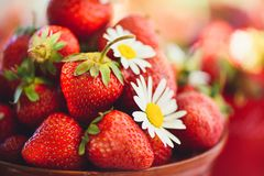 在一个碗的一个新鲜的草莓在一张桌上在夏天庭院用与一个低调阶段的春黄菊花装饰 吃健康 库存图片