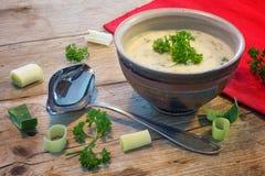 在一个碗的奶油沙司用韭葱和草本在土气木头 图库摄影