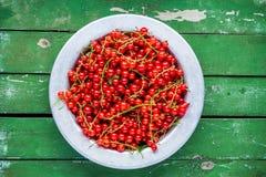 在一个碗的成熟新鲜的有机红浆果在绿色背景 图库摄影