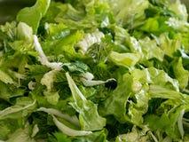 在一个碗的新蔬菜沙拉混合在准备好的厨房用桌上被投入在板材 库存图片
