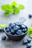 在一个碗的新鲜的蓝莓在黑暗的背景,顶视图 水多的野生森林莓果,越桔 免版税图库摄影