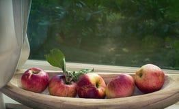 在一个碗的有机秋天苹果在与来自上面后院地区的自然光的窗口基石与拷贝空间 免版税图库摄影