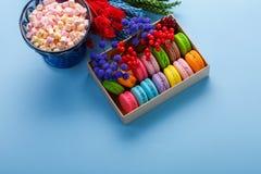 在一个礼物盒和蛋白软糖的五颜六色的蛋白杏仁饼干在蓝色背景的花瓶 甜macarons和花 图库摄影