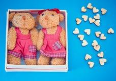 在一个礼物盒的两头熊在蓝色背景 库存图片