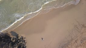 在一个离开的海滩的女孩的垂直的鸟瞰图 影视素材