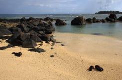 在一个离开的海滩的布朗凉鞋 库存照片