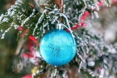 在一个积雪的树枝的蓝色圣诞节球 免版税库存图片