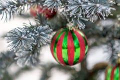 在一个积雪的树枝的镶边圣诞节球 免版税图库摄影