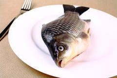 在一个空白牌照的鲜鱼鲤鱼有叉子的 免版税库存图片
