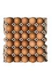 在一个空白背景查出的鸡蛋 免版税库存照片