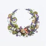 在一个空白背景的花卉框架 库存图片