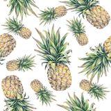在一个空白背景的菠萝 水彩五颜六色的例证 热带的果子 无缝的模式 免版税库存照片