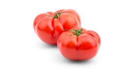在一个空白背景的蕃茄 库存图片