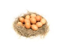 在一个空白背景的鸡蛋 免版税库存照片