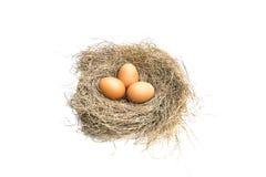 在一个空白背景的鸡蛋 免版税图库摄影