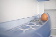 在一个空的冰箱的一个鸡蛋 库存图片