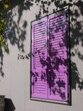 在一个窗口的紫色快门在有叶子的阴影的波多里加在墙壁上的 免版税库存图片