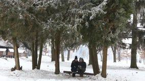 在一个童话冬天一份温暖的饮料温暖一对年轻夫妇 Chrismas心情 股票视频