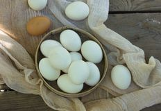 在一个筛子的鸡蛋在一张木桌上 免版税库存照片