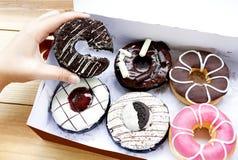 在一个箱子的五颜六色的油炸圈饼有巧克力片的,变粉红色给上釉求爱 免版税图库摄影