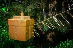 在一个箱子的圣诞节玩具在分支 免版税库存照片