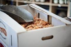 在一个箱子的虾在fishshop 库存图片