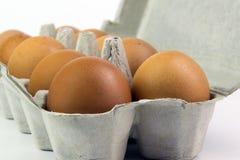 在一个箱子的鸡蛋在白色背景 库存照片