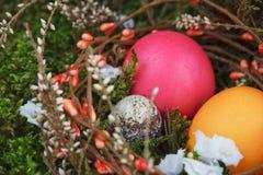 在一个篮子的复活节彩蛋与一个绿色青苔 库存图片