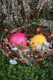 在一个篮子的复活节彩蛋与一个绿色青苔 图库摄影