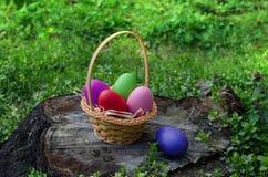在一个篮子的复活节彩蛋在树桩 库存图片