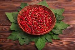在一个篮子的成熟红浆果在木背景 水多的明亮的红色莓果 在一张黑褐色桌上的新鲜的雅致的无核小葡萄干 库存照片