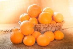 在一个篮子的新鲜的成熟果子蜜桔桔子有土气背景和与早晨阳光作用 免版税库存照片
