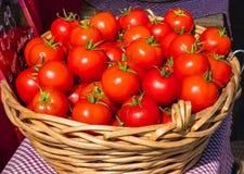 在一个篮子的新鲜的红色成熟可口蕃茄在市场上的销售中在阳光下 免版税库存图片