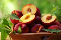 在一个篮子的桃子在背景 免版税库存图片