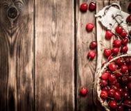 在一个篮子的樱桃在委员会 免版税图库摄影