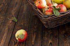在一个篮子的秋天苹果在木背景 免版税库存图片
