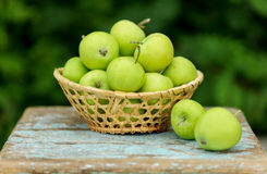 在一个篮子的自创土气绿色苹果在一把老凳子 库存图片